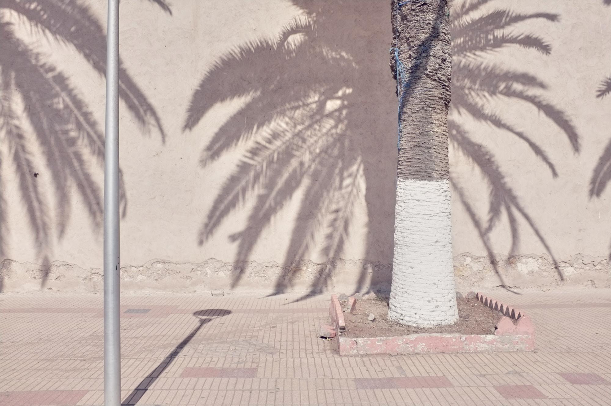 SMCLEOD_Morocco_2016_09_17