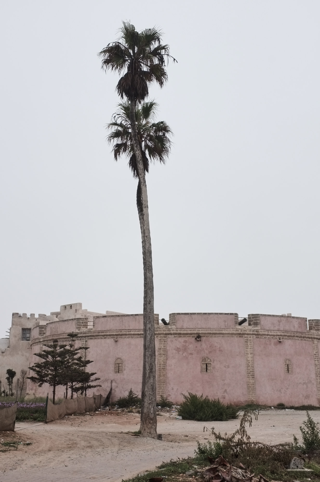 SMCLEOD_Morocco_2016_09_46